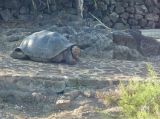 8 Day Discover the Highlands Galapagos
